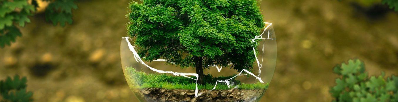 proteccao-ambiental